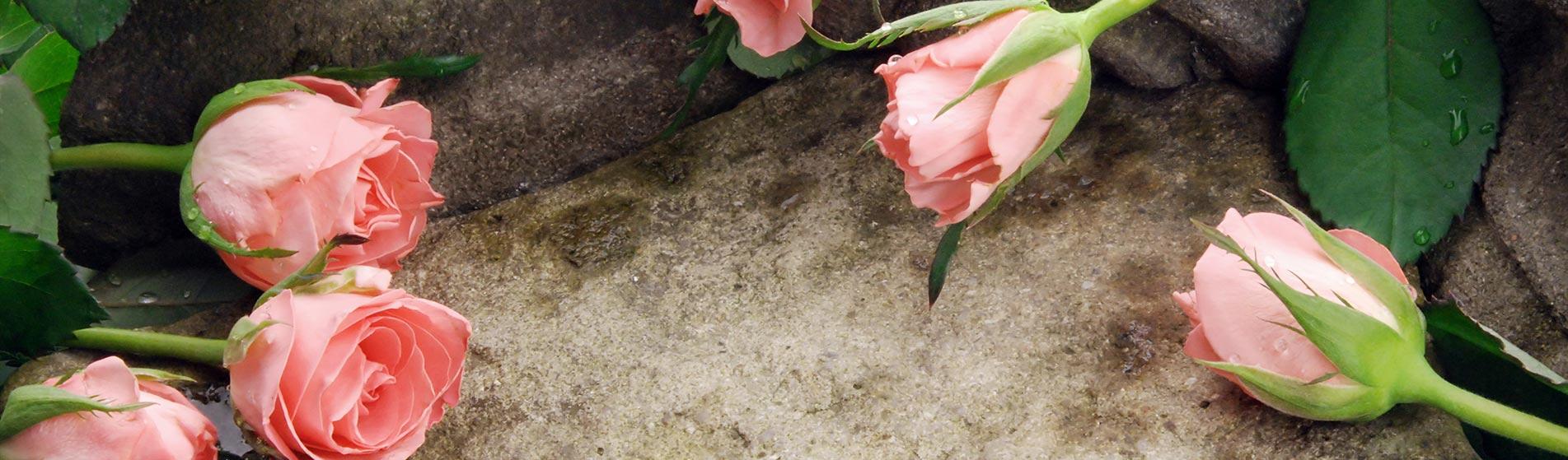 Lunardelli onoranze funebri cremazione